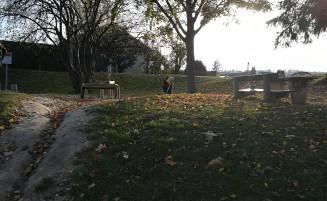 Herbstfreuden am ersten Novemberwochenende